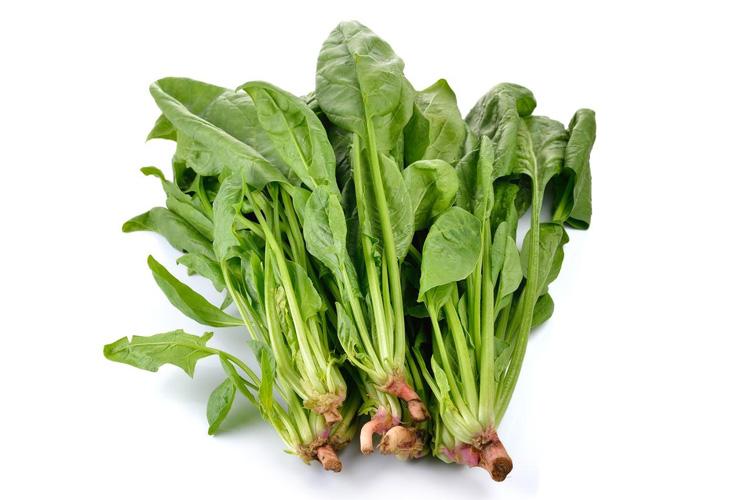 蔬菜配送的标准以及注意事项都有哪些?